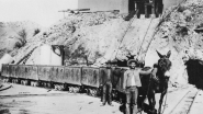 Mine Tales: When mines needed muscle, mules were often the ticket