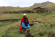 Peruvian farmer sues Newmont in US court over alleged use of violence, threats | MINING.com